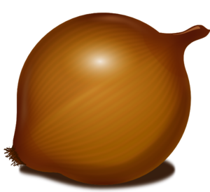 Onion Vector PNG Image PNG Clip art