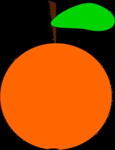 Orange PNG Image PNG Clip art