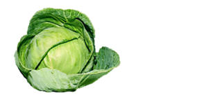Organic Green Cabbage PNG PNG Clip art