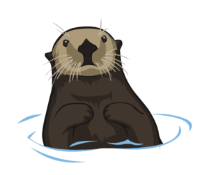 Otter PNG Clipart PNG images