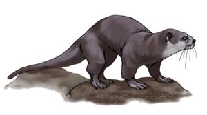Otter PNG Free Download PNG Clip art