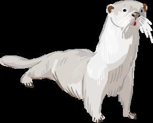 Otter PNG Transparent PNG Clip art
