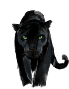 Panther PNG Background Image PNG Clip art