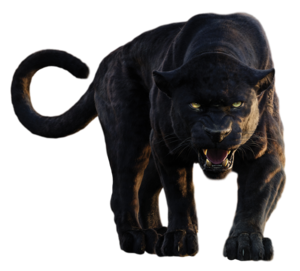 Panther PNG Clipart PNG Clip art