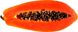 Papaya Transparent PNG PNG Clip art