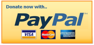 PayPal Donate Button PNG Clipart PNG Clip art