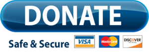 PayPal Donate Button PNG Image PNG Clip art