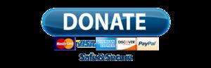 PayPal Donate Button Transparent PNG PNG Clip art