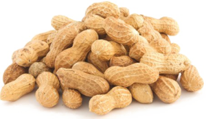 Peanut Background PNG PNG Clip art