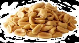 Peanut PNG Clipart PNG Clip art