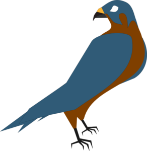 Peregrine Falcon PNG Transparent Image PNG Clip art