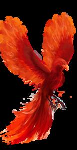 Phoenix PNG HD PNG clipart
