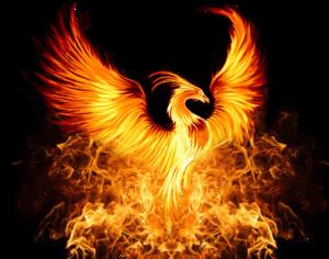 Phoenix PNG Photos PNG Clip art