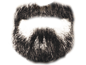 Photoshop Transparent Beard PNG PNG Clip art
