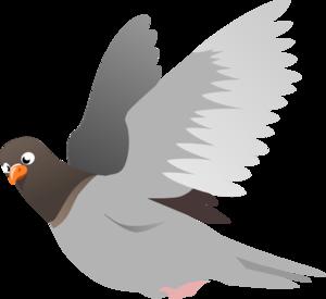 Pigeon PNG File PNG Clip art