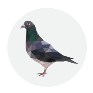Pigeon Transparent Background PNG Clip art