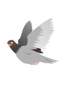 Pigeon Transparent Images PNG PNG Clip art