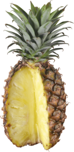Pineapple PNG Transparent PNG Clip art