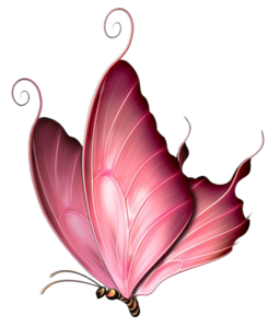 Pink Butterfly PNG Image PNG Clip art