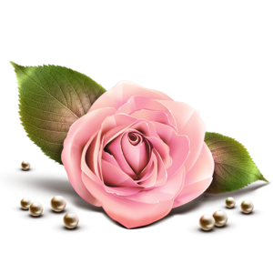 Pink Rose PNG Clipart PNG Clip art