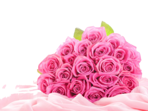 Pink Roses Flowers Bouquet PNG Clipart PNG Clip art