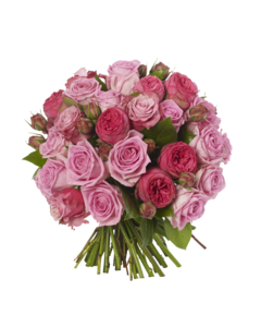 Pink Roses Flowers Bouquet PNG Free Download PNG Clip art
