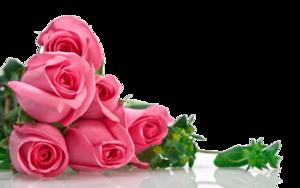 Pink Roses Flowers Bouquet PNG Transparent Image PNG Clip art