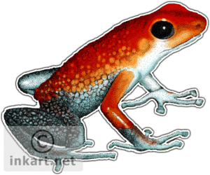 Poison Dart Frog PNG Picture PNG Clip art