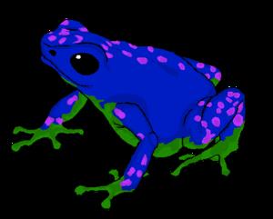Poison Dart Frog Transparent Images PNG PNG Clip art