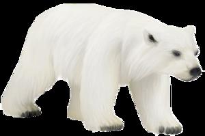 Polar Bear PNG Photos PNG Clip art