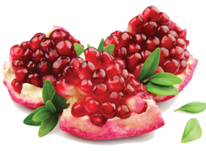 Pomegranate PNG Image PNG Clip art