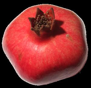 Pomegranate Transparent PNG PNG Clip art
