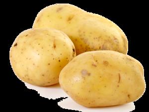 Potato PNG Clipart PNG Clip art