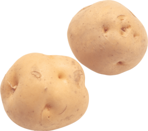 Potato PNG File PNG Clip art