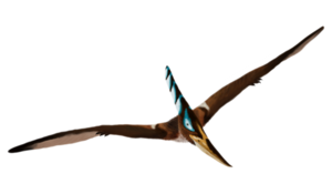 Pterosaurs Download PNG Image PNG Clip art