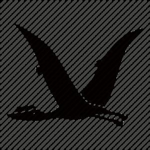 Pterosaurs PNG File PNG Clip art