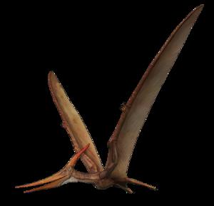 Pterosaurs PNG Transparent Picture PNG Clip art