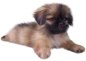 Puppy PNG File PNG Clip art