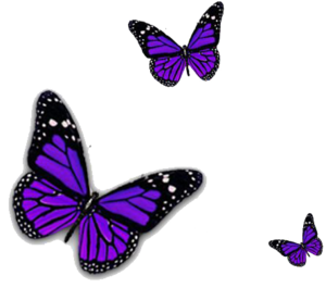 Purple Butterfly PNG Transparent Image PNG Clip art