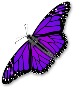 Purple Butterfly Transparent PNG PNG Clip art