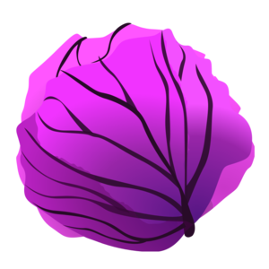 Purple Cabbage Clip Art PNG PNG clipart