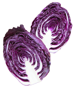 Purple PNG Pic PNG Clip art