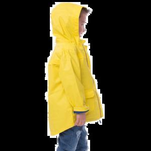 Raincoat PNG Transparent Picture PNG Clip art