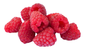 Raspberry PNG Clipart PNG Clip art