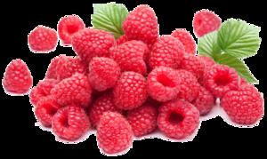 Raspberry PNG Photos PNG Clip art