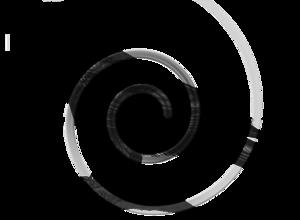 Raven Bird Transparent PNG PNG Clip art