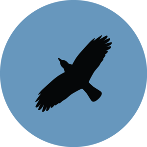 Ravenclaw PNG Download Image PNG Clip art