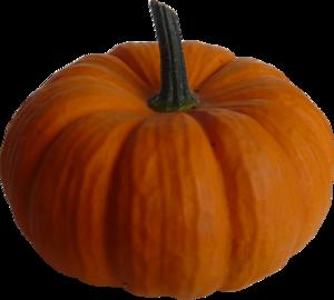 Real Pumpkin PNG Image PNG Clip art