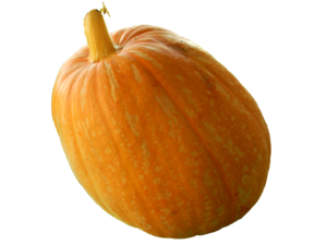 Real Pumpkin PNG Transparent Image PNG icons