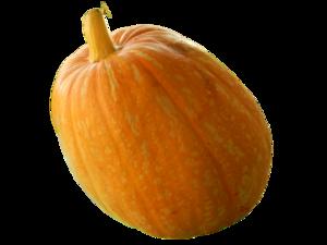 Real Pumpkin PNG Transparent Image PNG Clip art